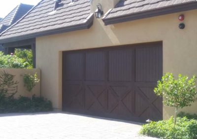 Bullfrogs Garage Door-3